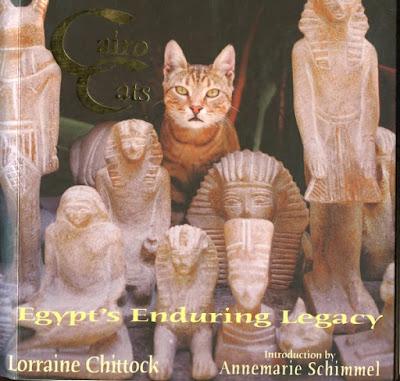 cairo book