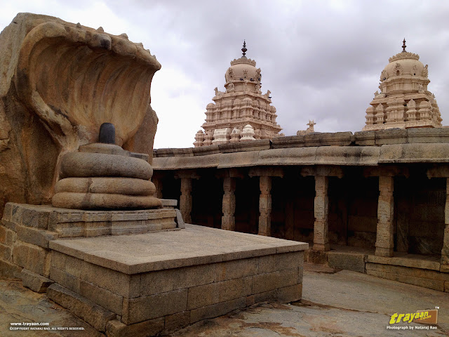 12 feet high monolithic nagalinga in Veerabhadra Swamy Temple at Lepakshi, in Andhra Pradesh, India
