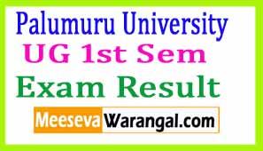 Palumuru University UG 1st Sem (CBCS) Dec 2016 Exam Results
