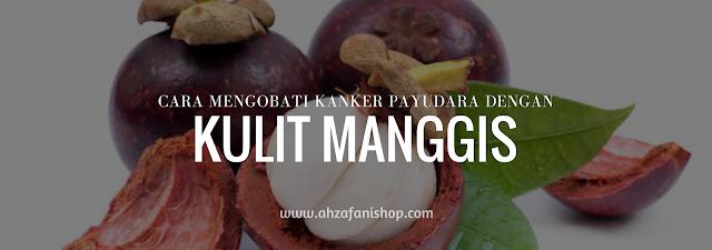 Coba Cara Mengobati Kanker Payudara dengan Kulit Manggis