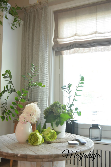 olohuoneen viherkasvit