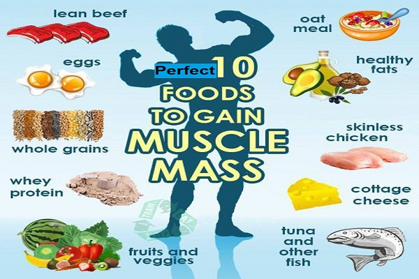 Healthy Foods To Eat To Gain Mass