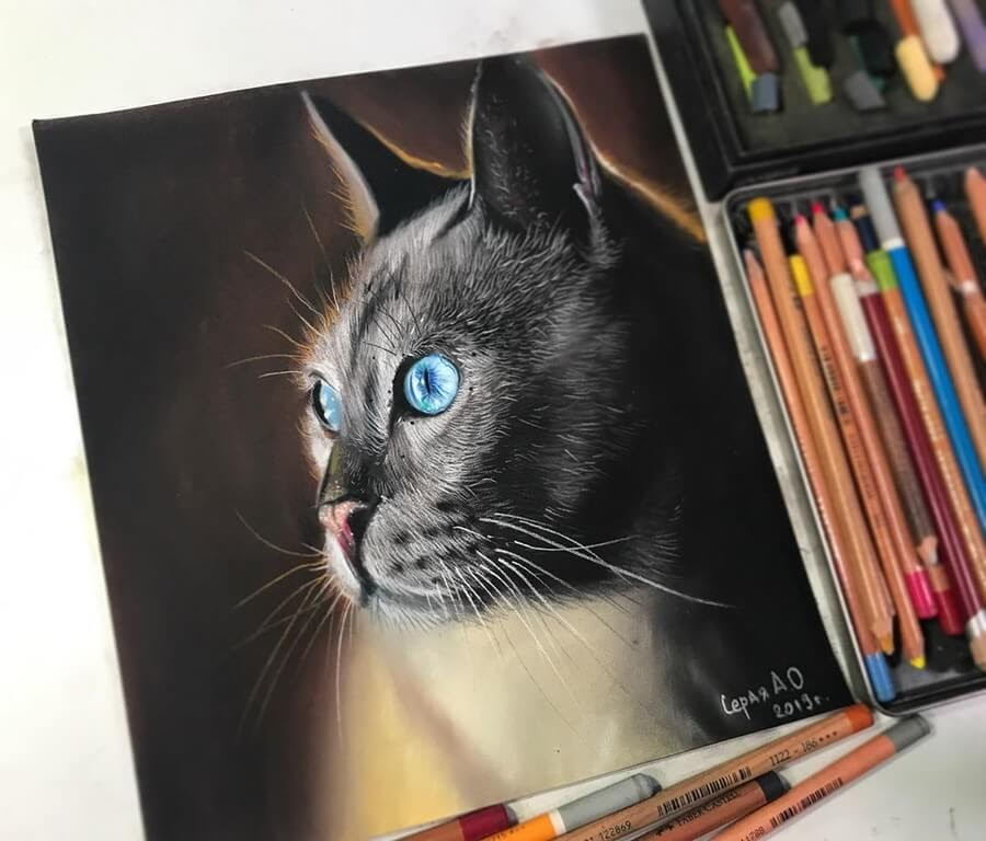 07-Cat-with-Blue-Eyes-Anastasia-Gray-www-designstack-co