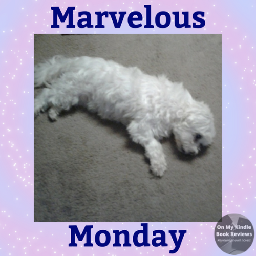 Marvelous Monday with Lexi: July 9th image. Lexi sleeping on her side, again!