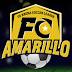 FC Amarillo announces name the team contest