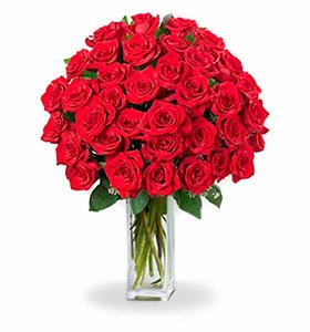 bloomex-red-roses
