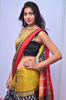 Naziya Khan Model in Saree At Kala Silk Handloom Expo Dec 2017~  Exclusive Galleries 003.jpg