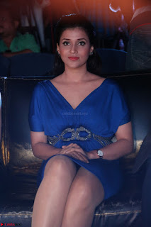 Mannara Chopra in Short Blue Dress at Rogue Movie Teaser Launch 1st March 2017 038.JPG
