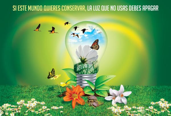 El Medio Ambiente: MEDIO AMBIENTE