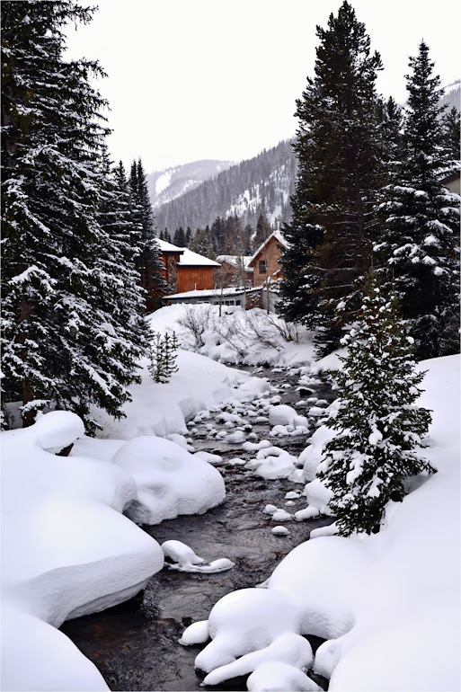 Spruce Creek - Winter Park Colorado