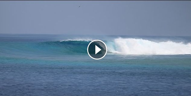 Surfing Cokes the Maldives 2016