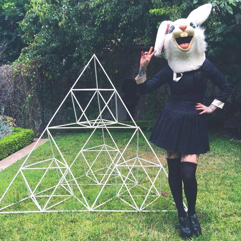 Kat en el jardín