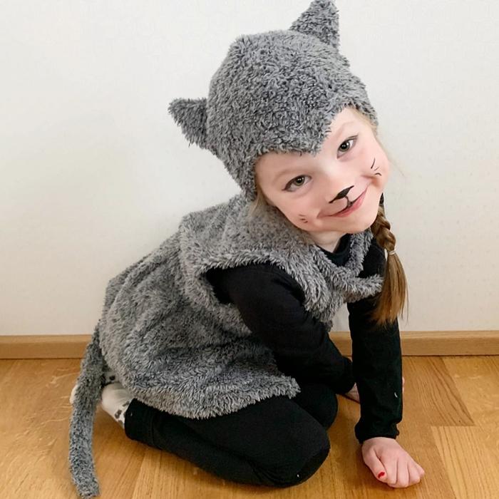 Kissa Asu