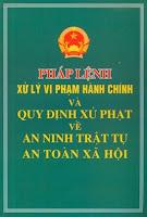 vi pham hanh chinh