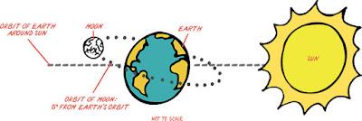 GÜNEŞ, DÜNYA VE AY'IN HAREKETLERİ VE SONUÇLARI 5. Sınıf Fen Bilimleri Konu Anlatımı