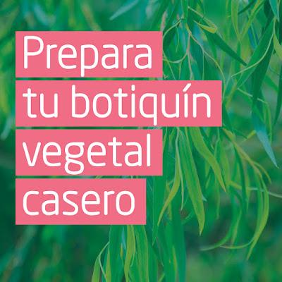 Botiquin vegetal casero