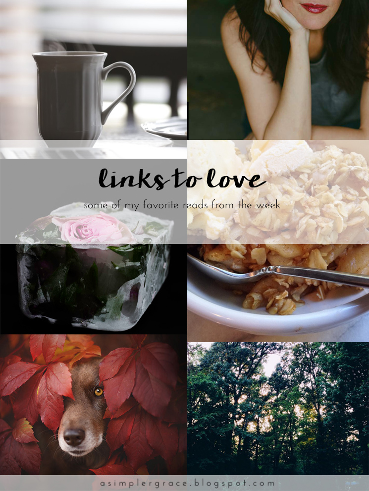 A post featuring my favorite reads from the week.  #linkstolove #fridayfavorites - Links to Love | 71 - A Simpler Grace