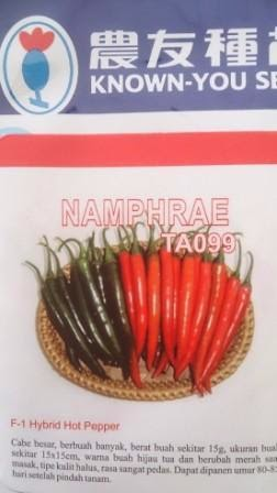 Cabe Namphrae, Benih Cabe Namphrae, Cabai Namphae, benih petani,tahan virus, buah lebat, Know You Seed, tahan layu, tahan cekaman calcium