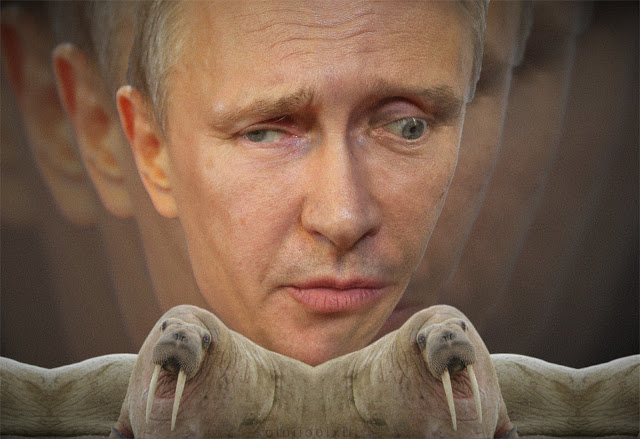 The face of an odd looking Владимир Путин(Putin)  sits behind to conjoined walruses. The face echoes into the background.