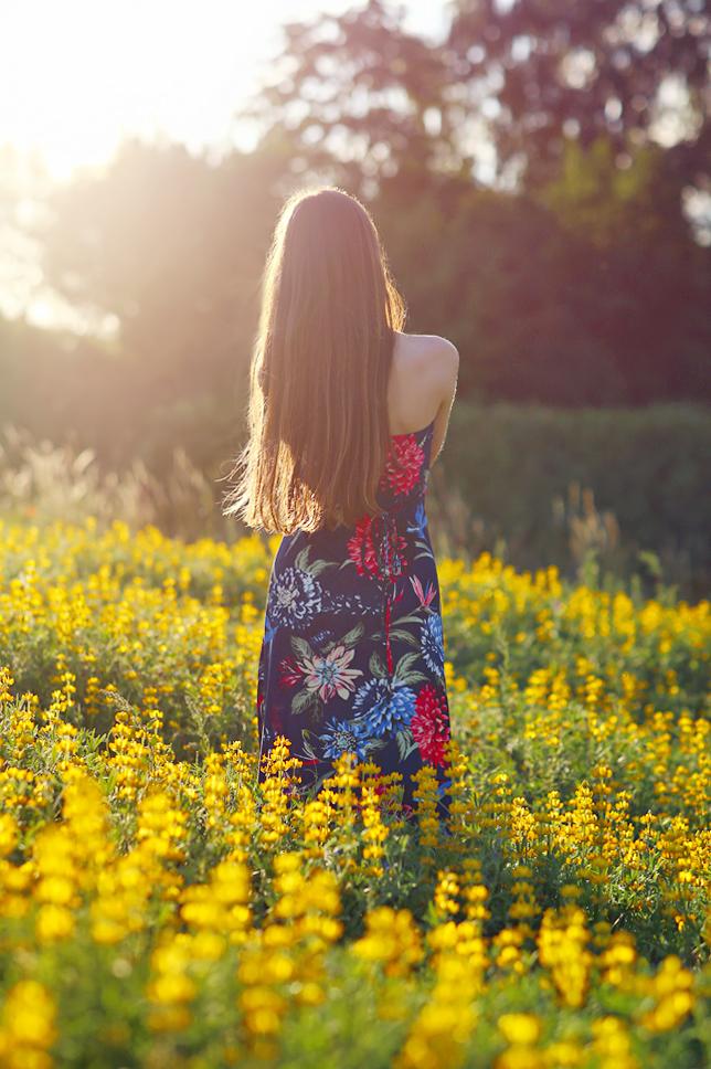 żółte pole łubinu modelka