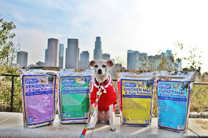Complete Dog Foods That Contain Beef