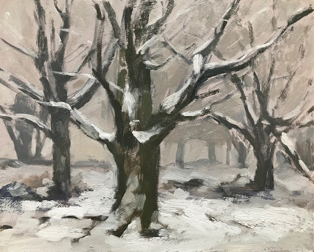 #288 Mist & Snow The Devils Punch Bowl 8×10″