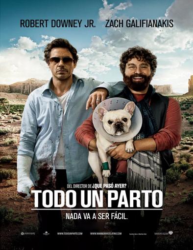Ver Todo un parto (Due Date) (2010) Online