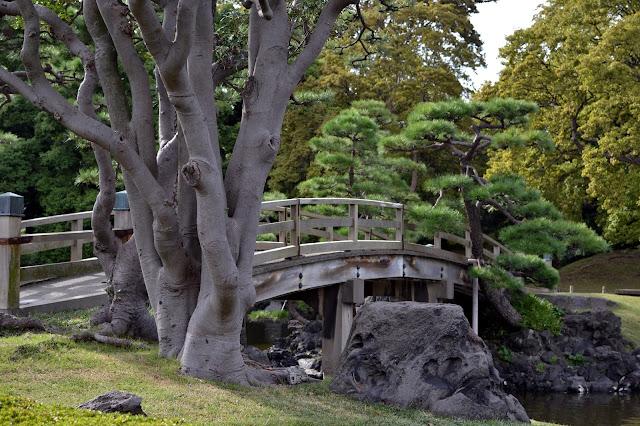 Japan, Tokyo, tea ceremony, on a budget, Hamarikyu gardens, Hama rikyu gardens, matcha, 抹茶, Japanese culture, Zen Buddhism, Atmosphere, informal, cheap, Wagashi, Nakashima tea house, Shioiri pond, shogun,