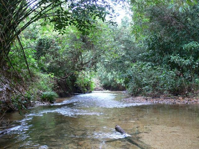 Destinasi Wisata Alam Untuk Keluarga di Batu Mentas Belitung