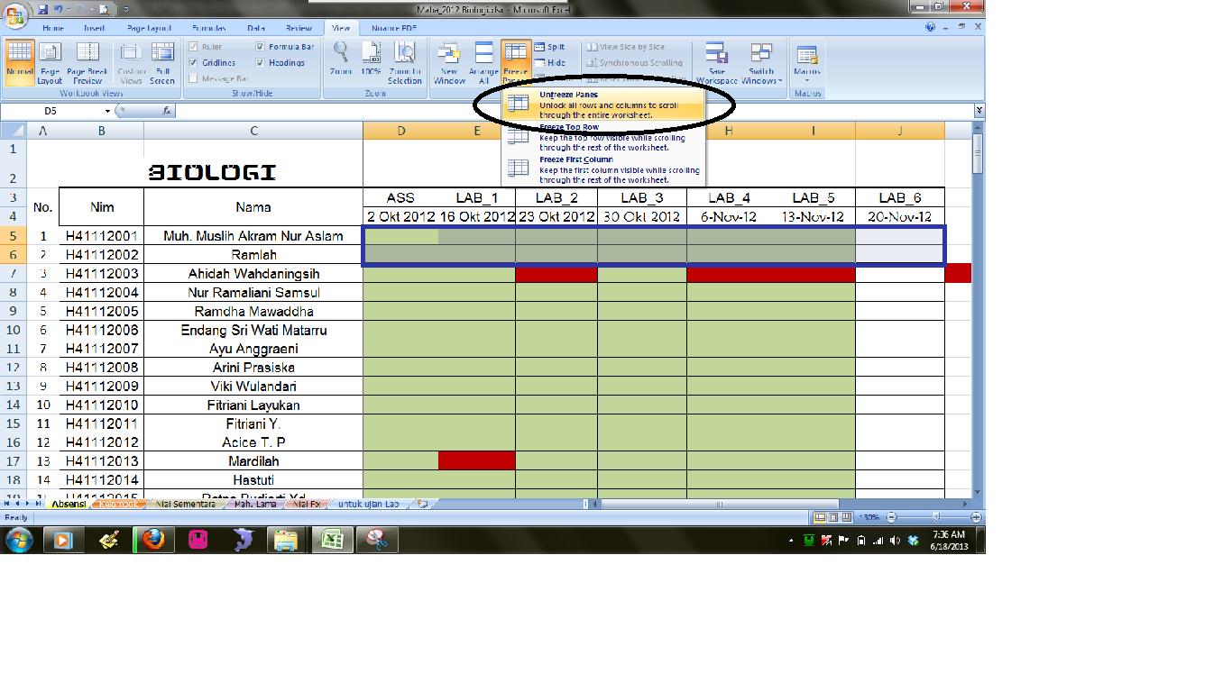 Red Data Cara Menampilkan Baris Dan Kolom Tetap Pada Ms