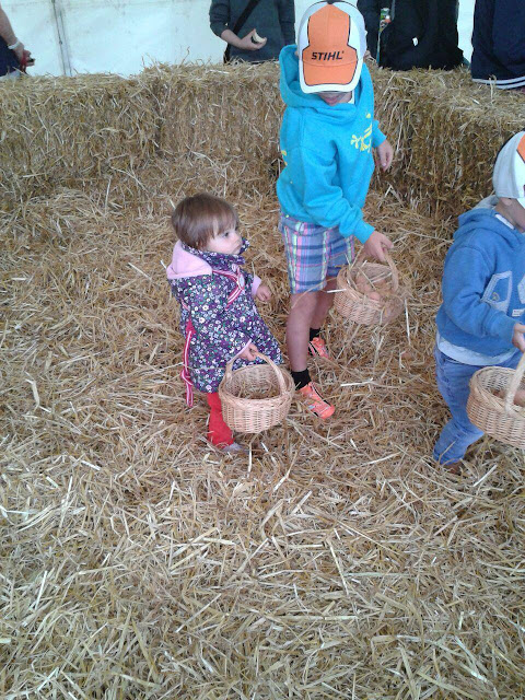 Eldest collecting eggs in the hay