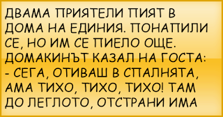 ВИЦОВЕ | Двама приятели пият в дома на единия...