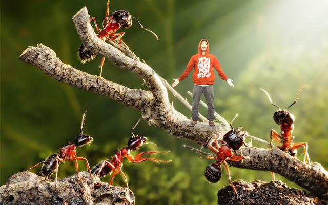 Miniatur Photography Bung Topek dan Semut-semutnya