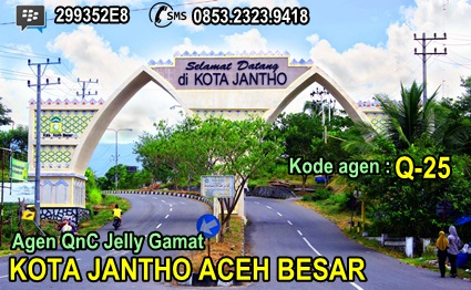 Agen QnC Jelly Gamat Kota Jantho Aceh Besar