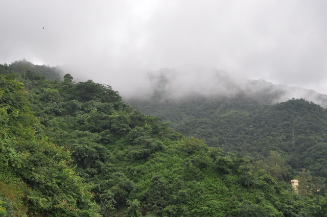 dehradun hills