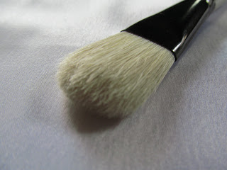 Vega Face Pack Brush Review