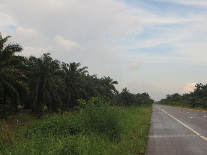 Дорога после дождя таиланд