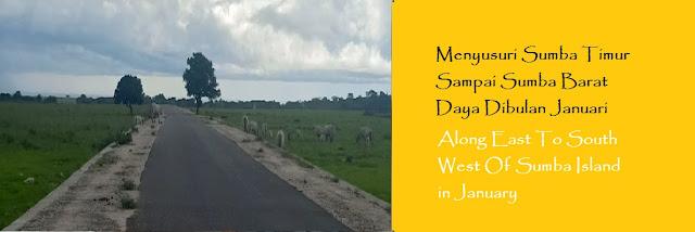 https://ketutrudi.blogspot.com/2019/01/menyusuri-sumba-timur-sampai-sumba.html
