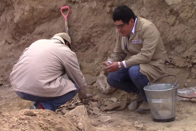 Archaeological remains found near Wariwillka site in Peru