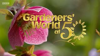 Gardening tips ep.2 2017