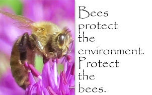 Save the Bees...