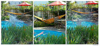 geniesser garten wasser im garten pool teich. Black Bedroom Furniture Sets. Home Design Ideas