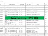 Daftar Peserta Yang Dinyatakan Lolos Untuk Mengikuti Tahap Seleksi Kompetensi Bidang (SKB) - Kabupaten Agam