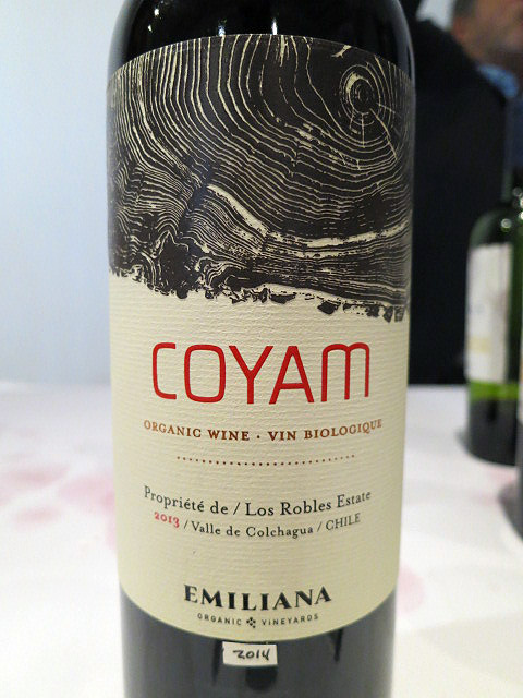 Emiliana Coyam 2014 (91 pts)