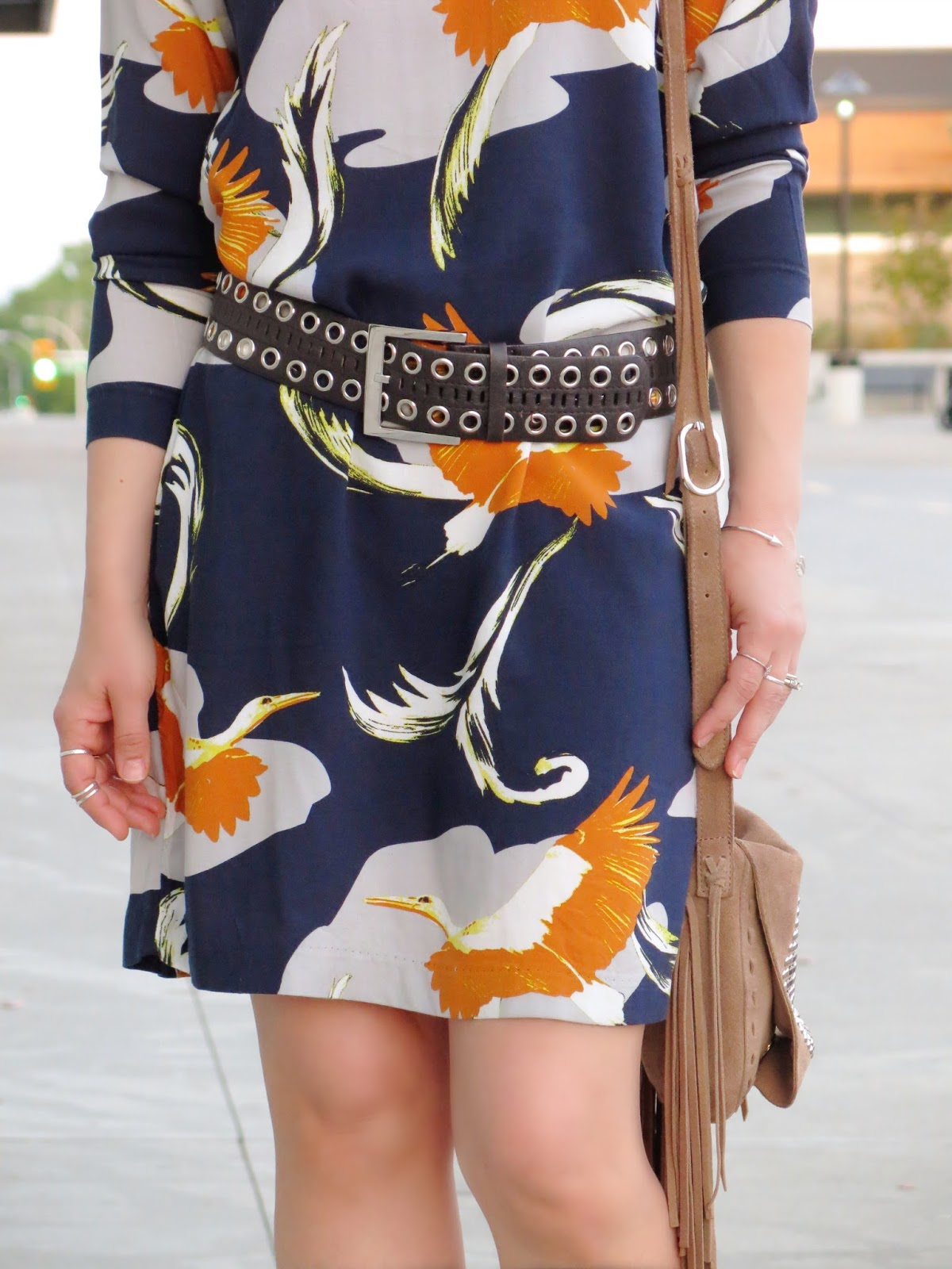 styling a stork-print shift dress with a wide belt and fringy bag