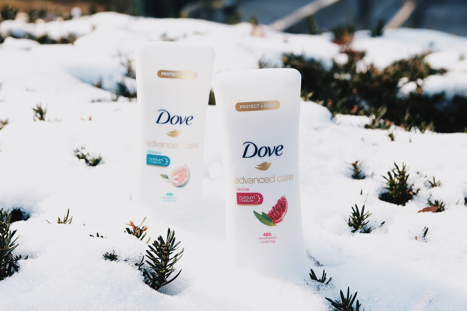 Caring for My Skin During Winter Months with Dove