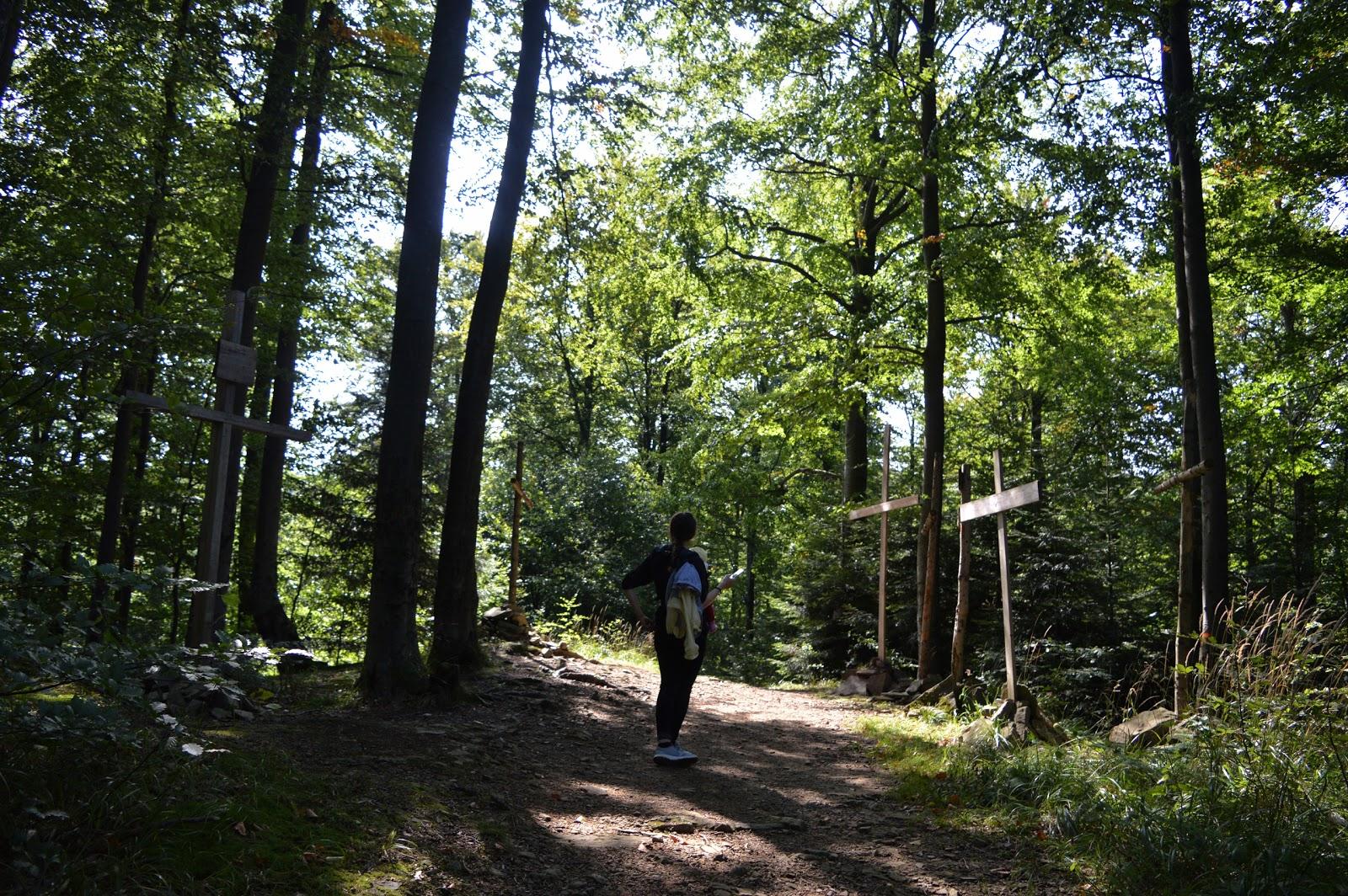 jawornik, szczyt, drewniane krzyże na jaworniku, góry, bieszczady, szlak w bieszczadach, krótki szlak, dokąd w bieszczady, rzucić wszystko i wyjechać w Bieszczady
