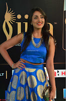 Madhu Shalini Looks Super Cute Slim trim Blue Choli Ghagra IIFA Utsavam Awards 06.JPG