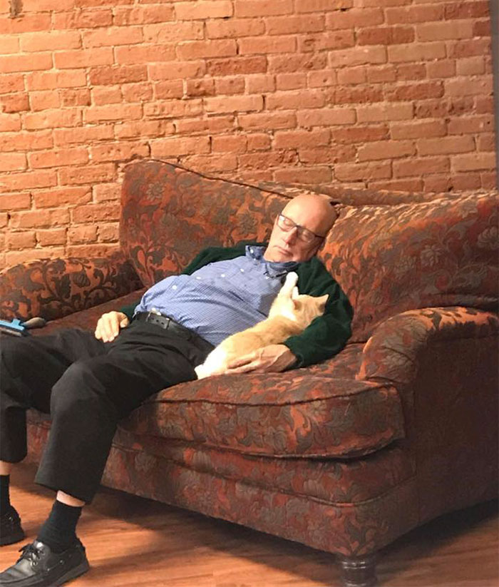 The Internet Can't Get Enough Of This Man Who Volunteers And Naps With Cats At A Shelter Every Day