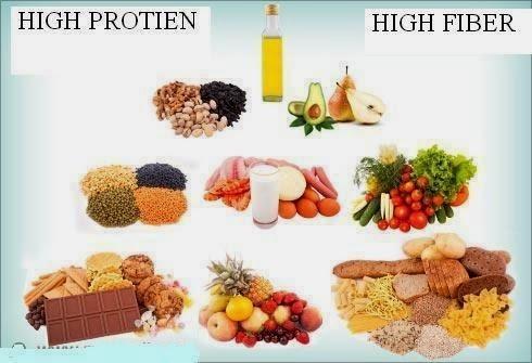 fiber and protein diet